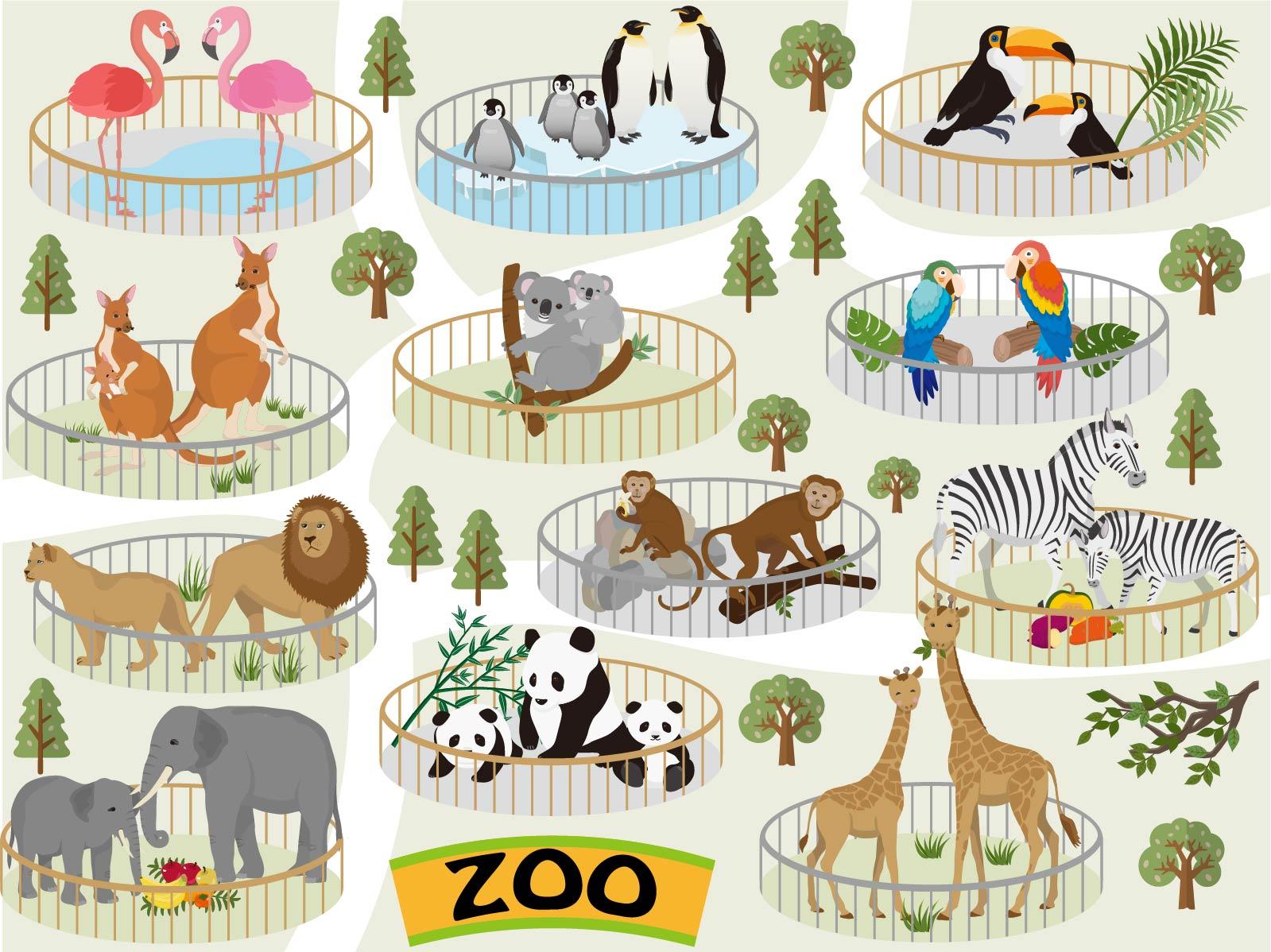 動物園のイメージ画像