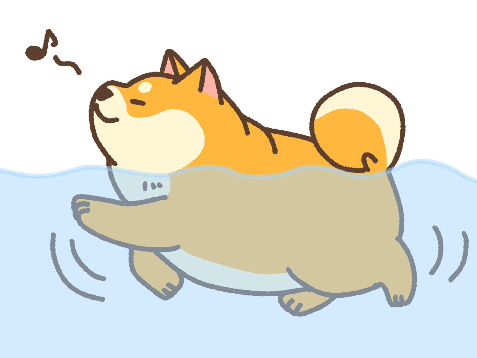 水泳のイメージ画像