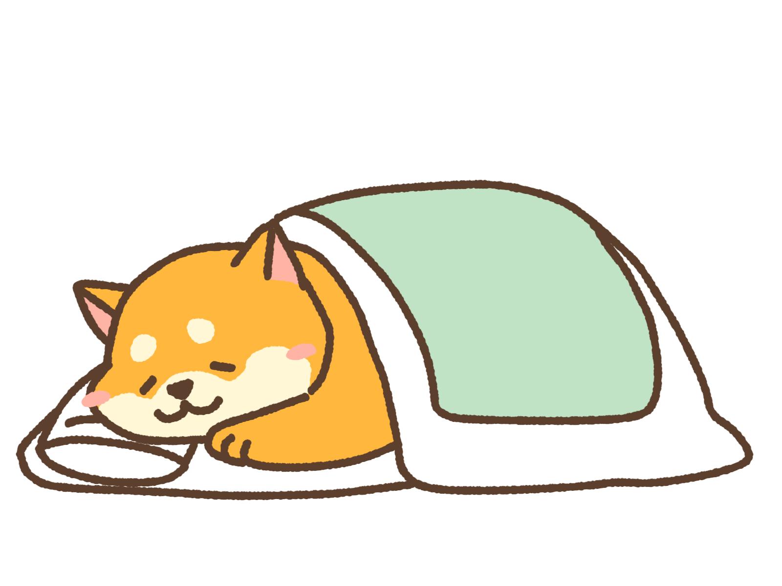 睡眠のイメージ画像