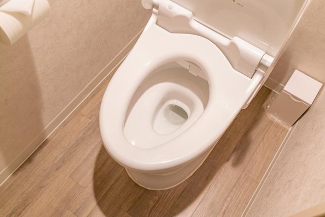 トイレ掃除のイメージ画像2
