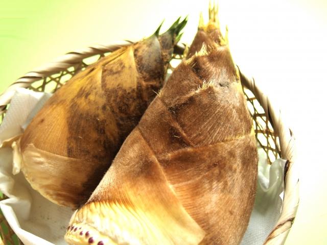 筍のイメージ画像