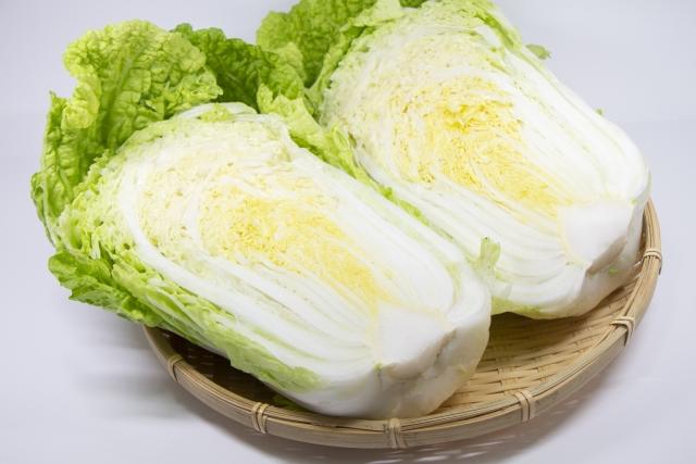 白菜のイメージ画像