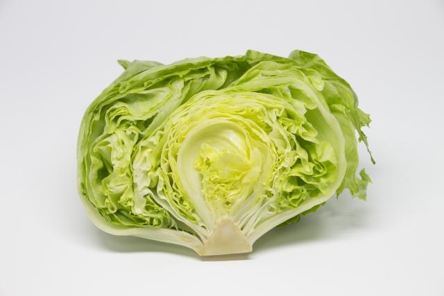 レタスのイメージ画像