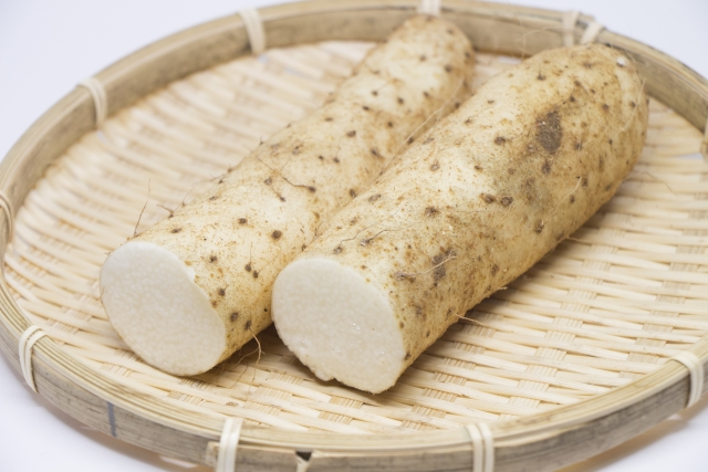 長芋のイメージ画像