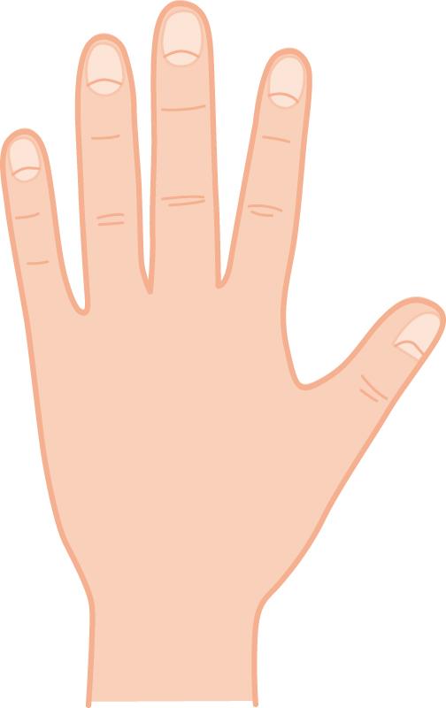 男性の手や爪のイメージ画像